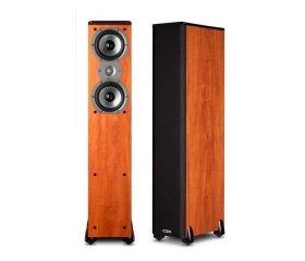 Polk Audio TSi 300-1