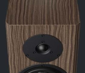 DYNAUDIO SPECIAL FORTY-10