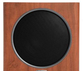 Polk Audio PSW110-1
