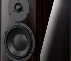 DYNAUDIO SPECIAL FORTY-5 (2)