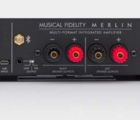 merlin-amp-rear